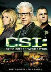 CSI: Crime Scene Investigation Season 15 - Đội điều tra hiện trường